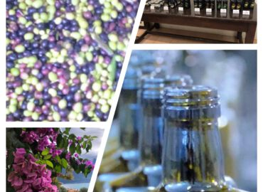 Olivenöl aus Bardolino